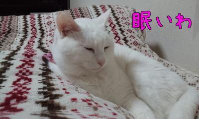 寝るぽ子3