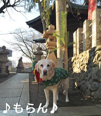 150105 初詣散歩-3
