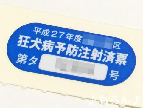 150417 狂犬病予防接種-4