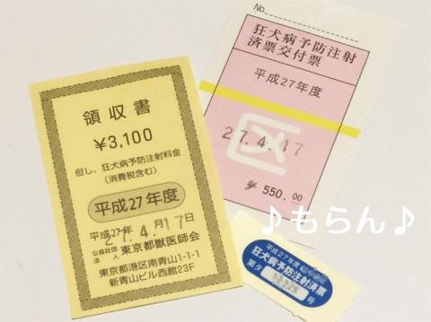 150417 狂犬病予防接種-5