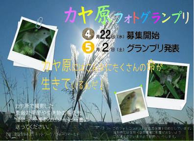 photobks.jpg