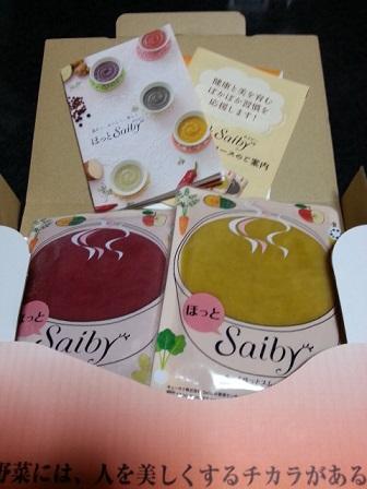 Saiby03.jpg