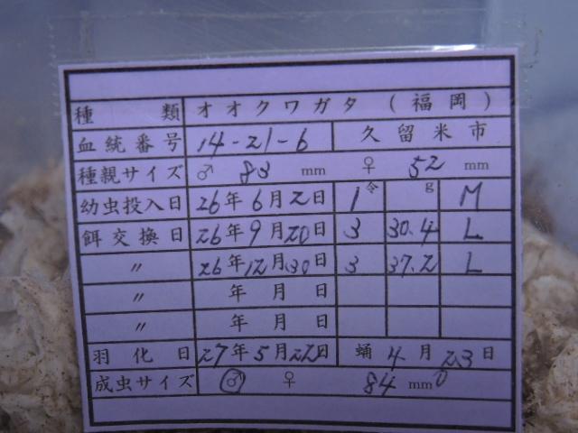 DSCN0446[1]