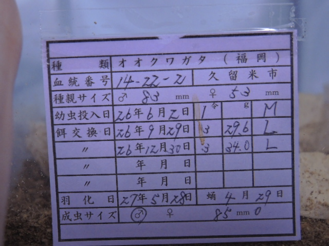 DSCN0461[1]