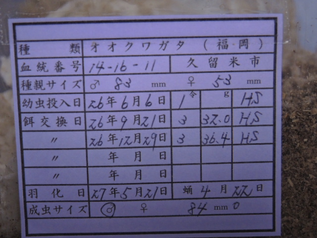 DSCN0468[1]