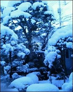 2015-2-14 舞鶴の雪s
