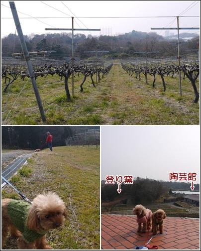 農業公園散歩