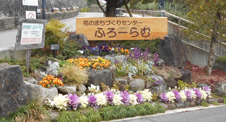 入口(道)