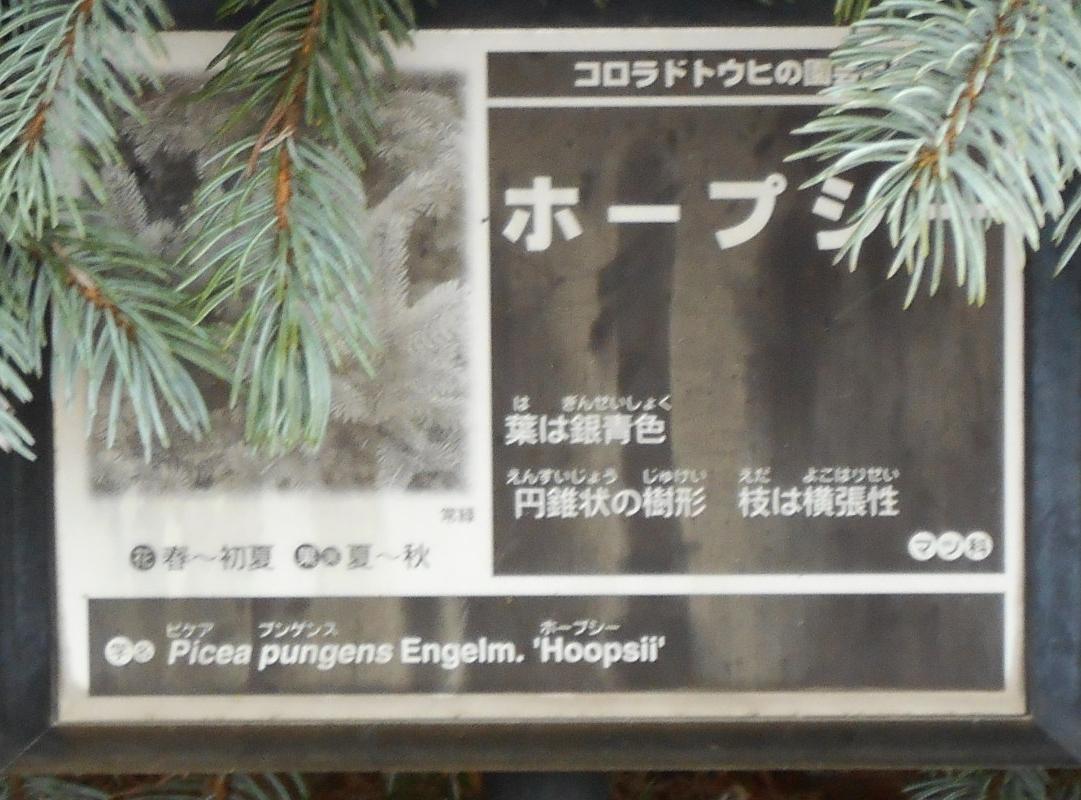 ホープシ標識