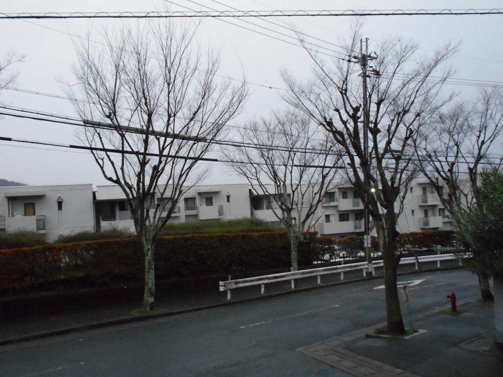 雨の我が街