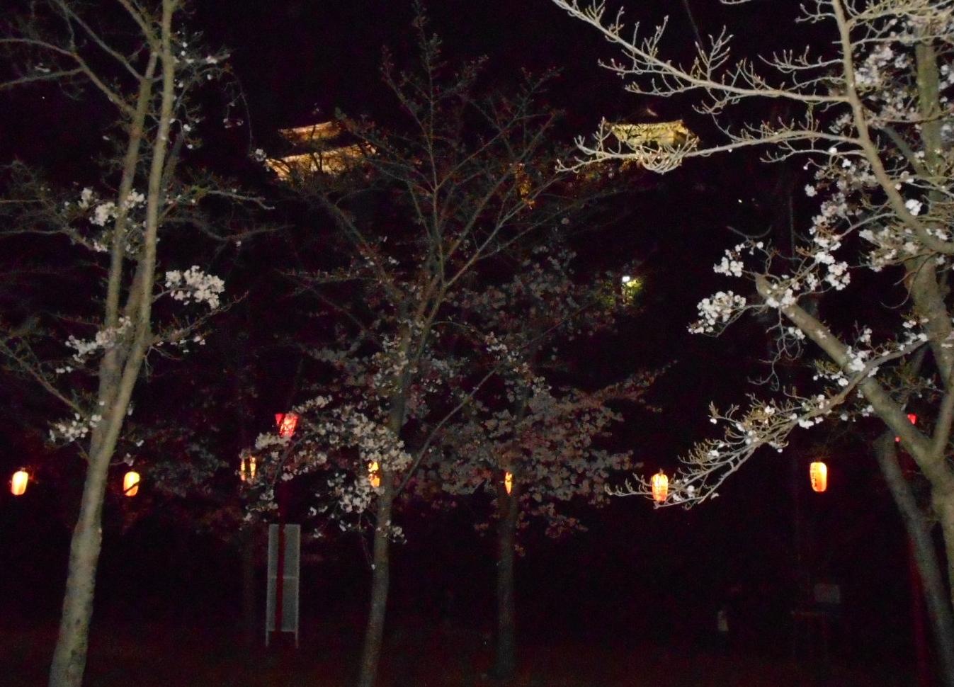 和歌山城が見える