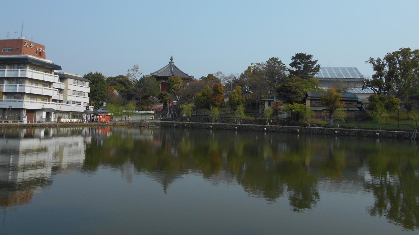 猿沢の池①