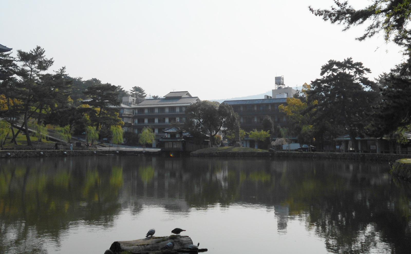 猿沢の池⑤