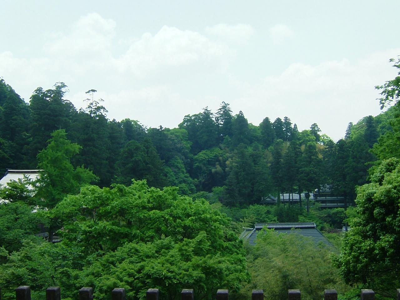 寺からの景色