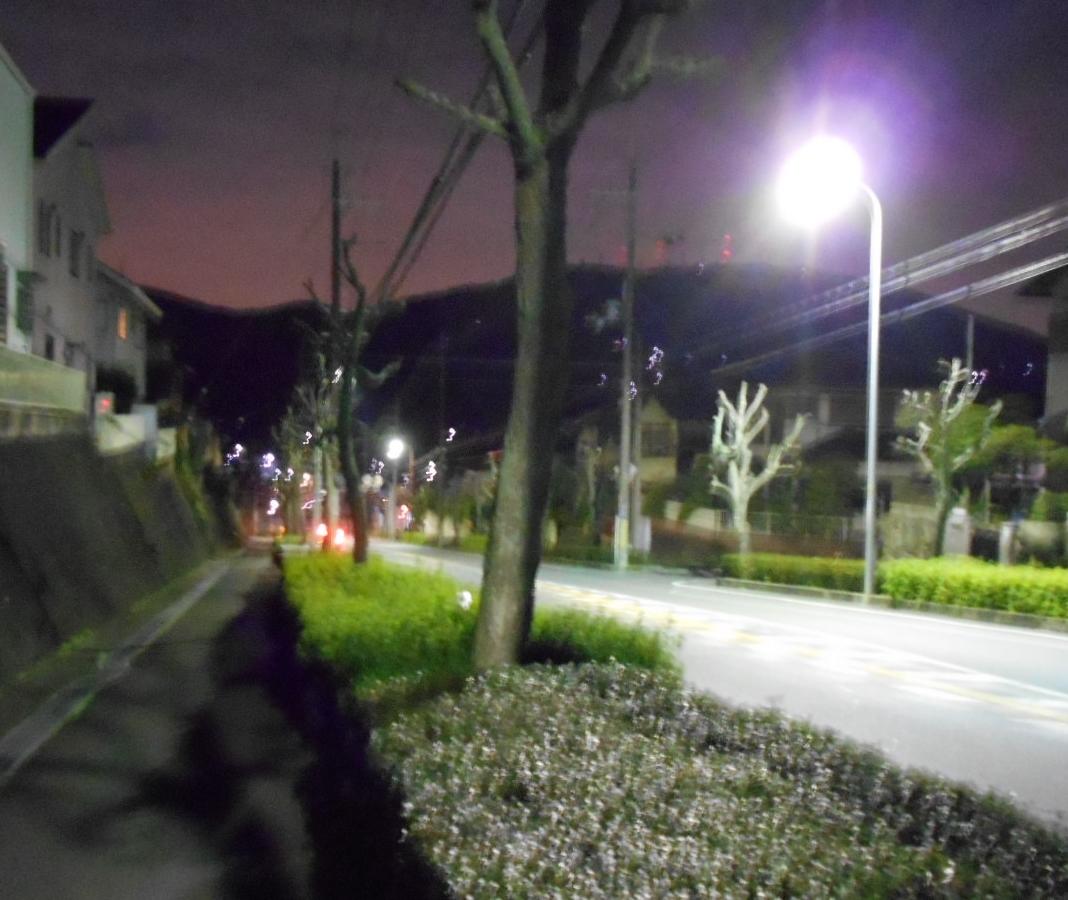 DSCN6589.jpg