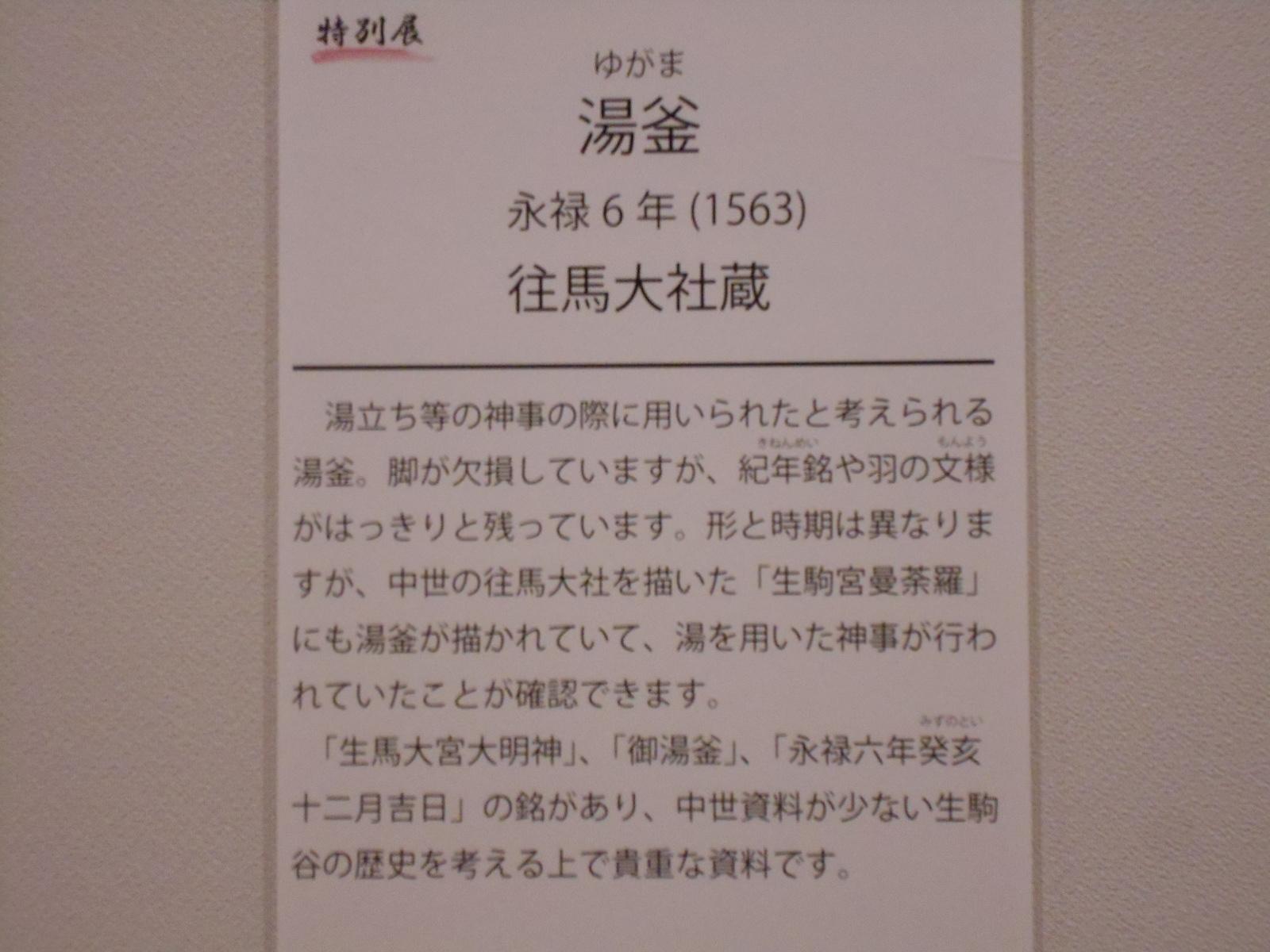 DSCN6635.jpg