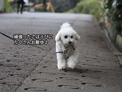 150427_7.jpg