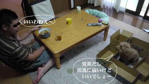 P1360924(1).jpg