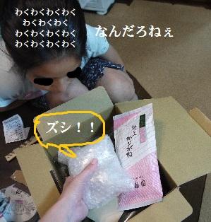 P1390141(1).jpg