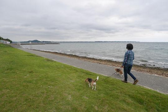 015湖畔散歩