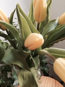 Blumentu.jpg