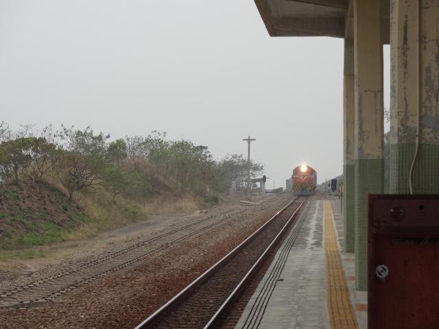 Local列車