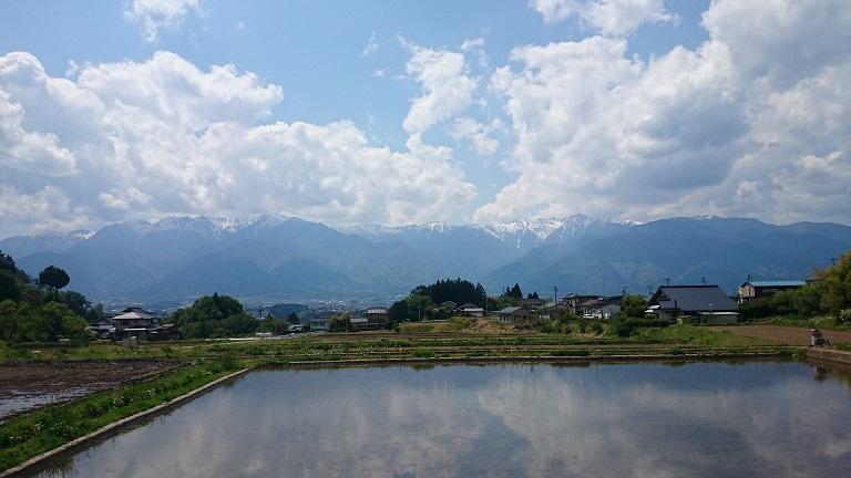 中央アルプス+田園風景