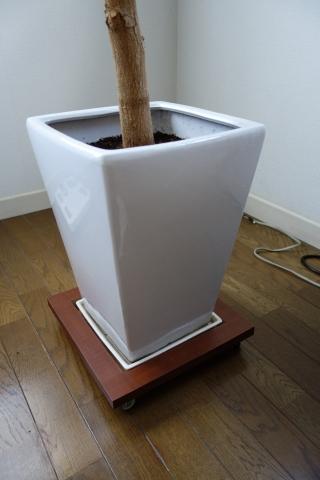 DIY 観葉植物 移動台