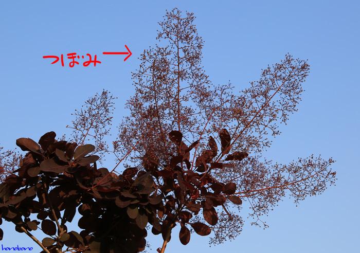 099-tu-4.jpg