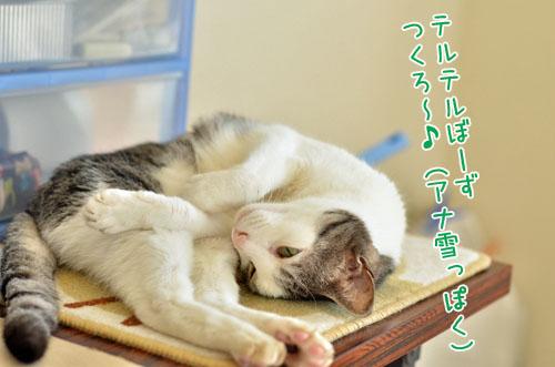DSC_5468_2.jpg