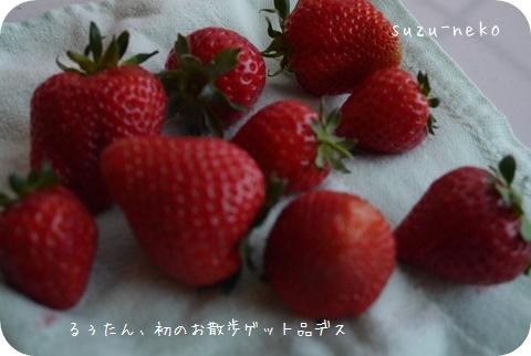 20150501-004.jpg