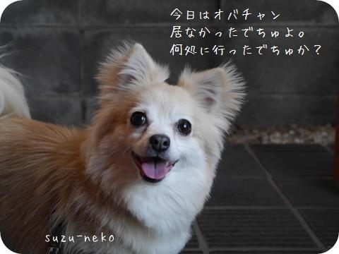 20150502-001.jpg