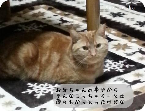 20150518-004.jpg