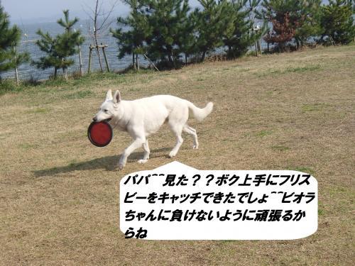 P3210192_convert_20150322104149.jpg