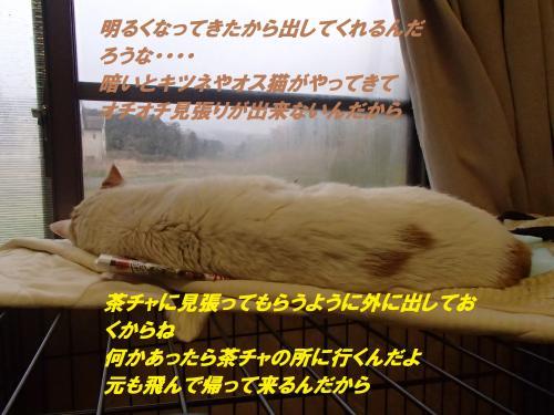 P4040480_convert_20150404133322.jpg