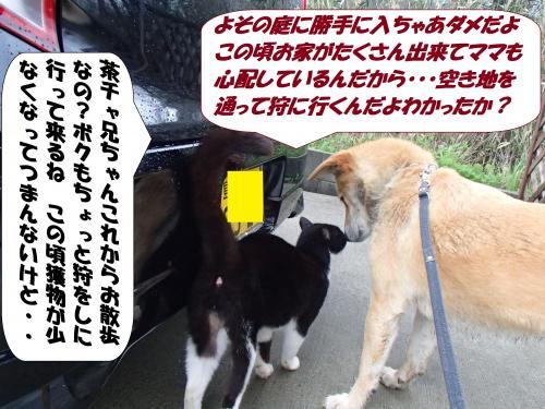 P4130690_convert_20150414143438.jpg