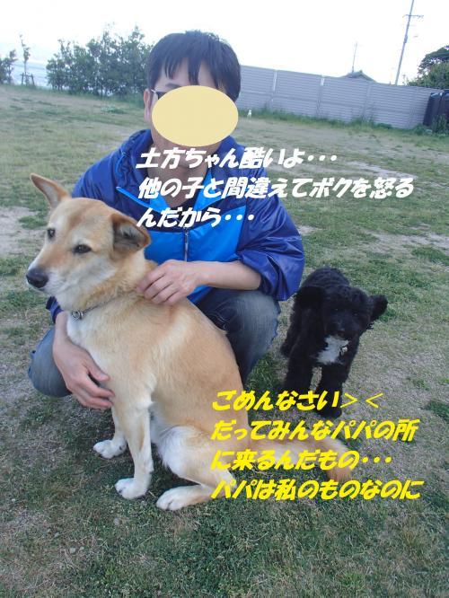 P5051056_convert_20150506134930.jpg