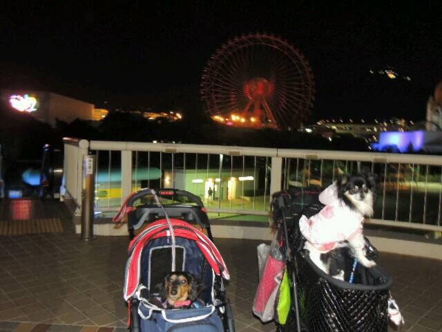 fc2blog_20150220104752416.jpg