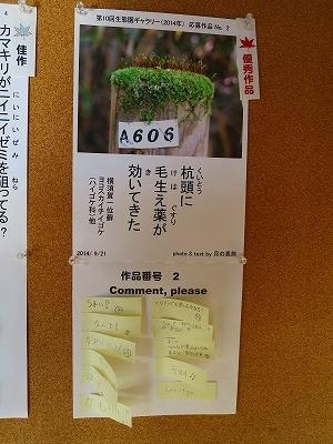s-IMG_8260.jpg