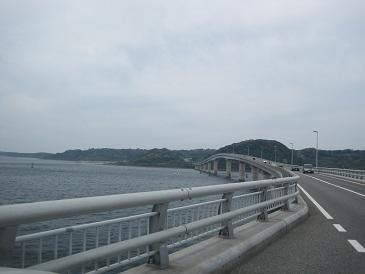 IMG_9503-3.jpg