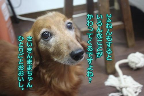 IMG_48020.jpg