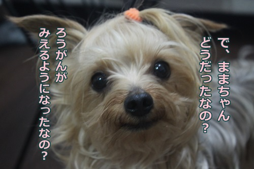 IMG_48080.jpg