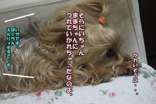 IMG_48110.jpg