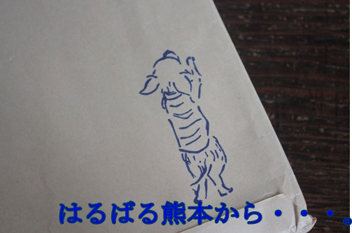 IMG_48320.jpg