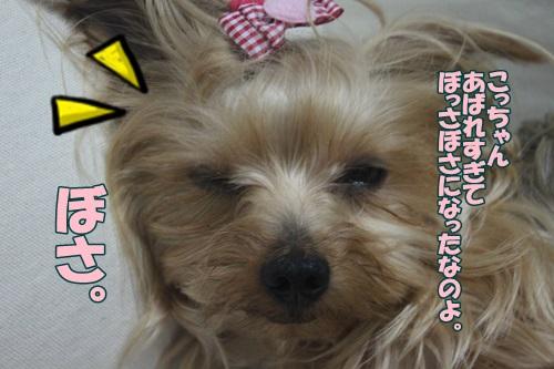 IMG_48820.jpg