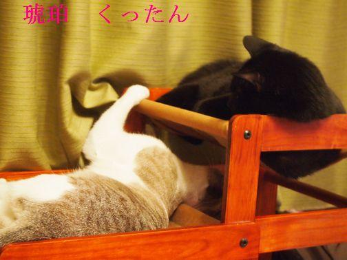 kurokohaku2_20150301111610b7c.jpg