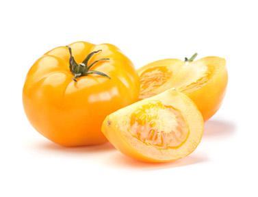 Yellow-tomato.jpg