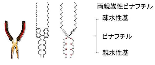 分子ペンチ