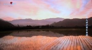 日本の風景は自然?人工?
