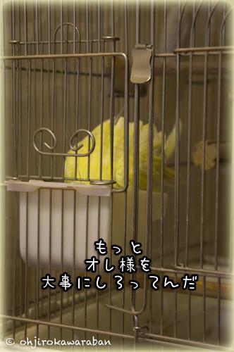 10*10-DSC08017